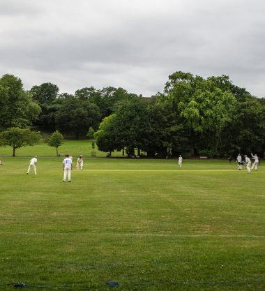 Sunday Afternoon Cricket
