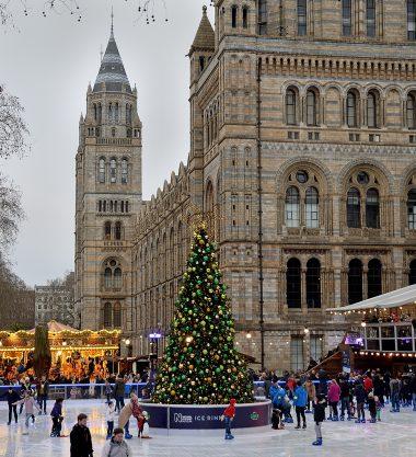Christmas at the Natural History Museum